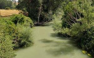 Zadorra Bizirik denuncia vertidos que mantienen turbio el río Omecillo
