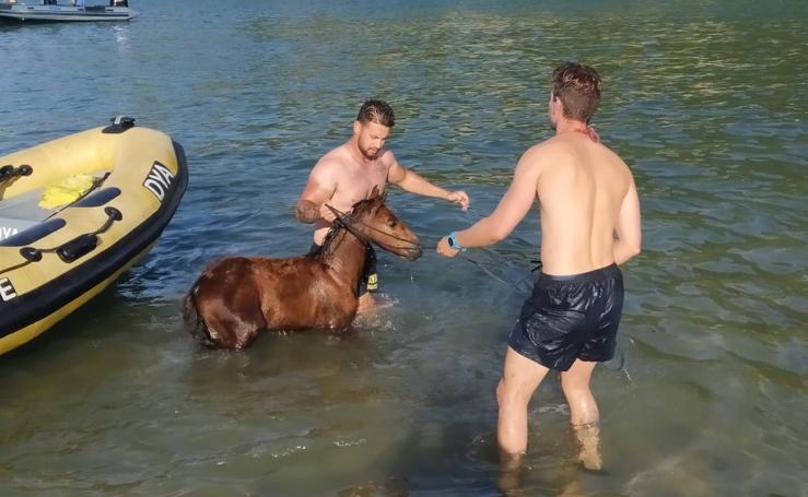 El rescate de un caballo en Saltacaballo, en imágenes