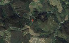 Un fallecido en Gipuzkoa al ser embestido por un toro escapado de un caserío
