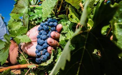 Cae granizo sobre una Rioja Alavesa en alerta por lluvias y tormentas