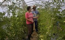 Lurbeko: «La agricultura ecológica es prevención»