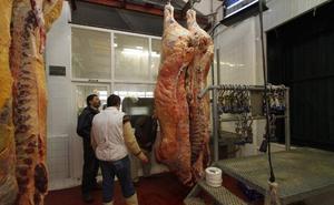 Ganaderos y carniceros aguardan expectantes la reapertura del matadero de Llodio