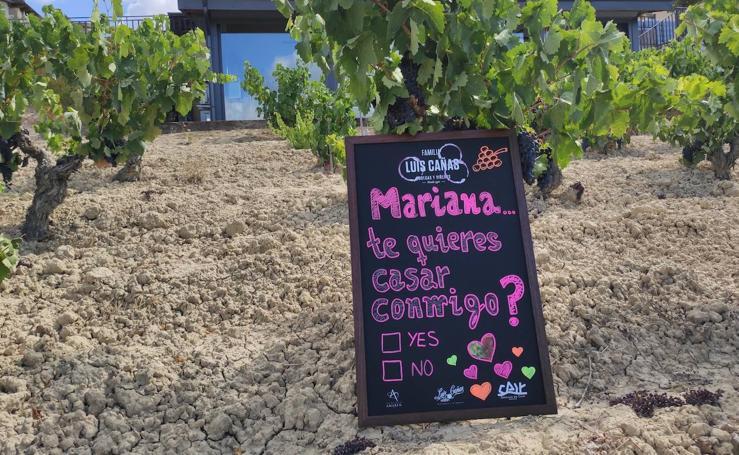 Amor a la mexicana: una petición de mano en los viñedos de Luis Cañas