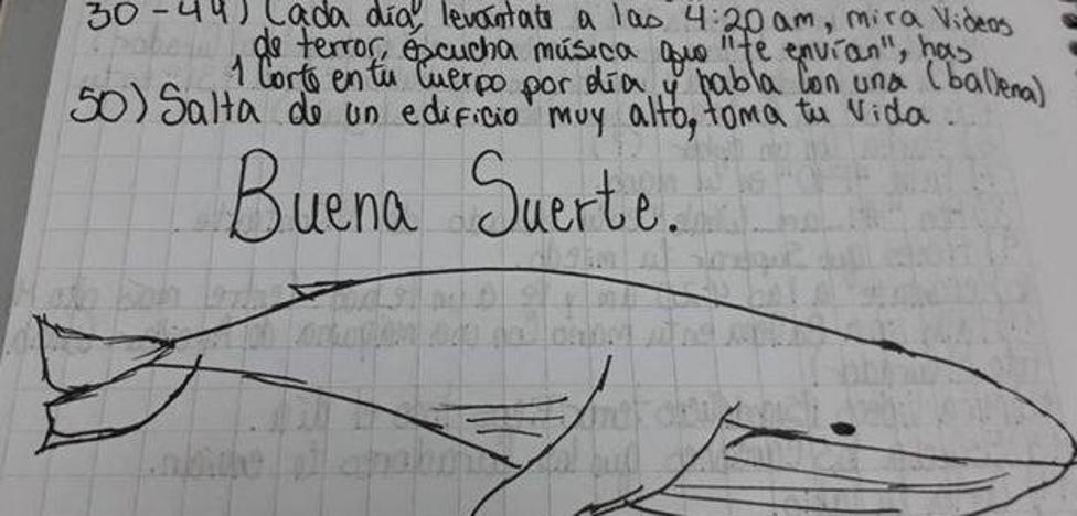 La Fiscalía recoge el primer caso de suicidio por la 'ballena azul' de una joven en Euskadi