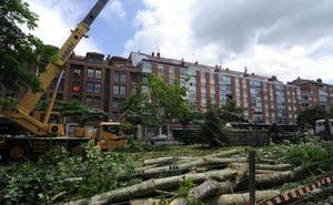 Doce colectivos ecologistas y sociales se unen para «aportar» en las políticas 'green' en Vitoria