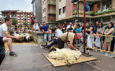 Amurrio, refugio de pastores