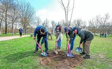 Vitoria planta 1.230 árboles este año y tiene 2.400 más que en 2016