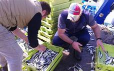 83 jóvenes se curten en alta mar en la actividad pesquera