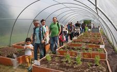 Allende Salazar planta a su alumnado dentro de su nuevo invernadero