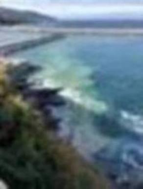 Denuncian otro «espectacular» derrame al mar próximo a la fábrica de harina de Mundaka