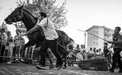 1.200 euros al mes por un caballo campeón