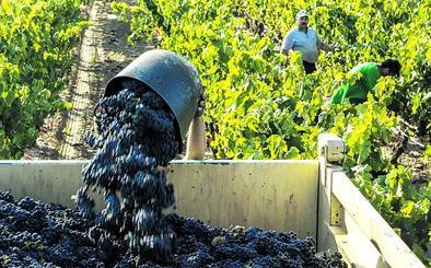 ABRA insiste en salir de Rioja y pide a Lakua que reactive una denominación propia alavesa