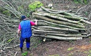 «Convirtieron el bosque de Abanto en un lodazal», afirma un ertzaina ante el juez