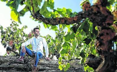 Otros veinte viñedos singulares en 2020