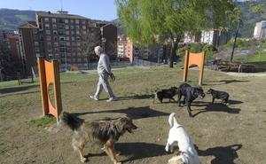 Barakaldo inicia una campaña para impulsar la acogida de animales abandonados en la calle