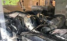 El Ayuntamiento realiza un control del pescado azul en las lonjas de Vitoria