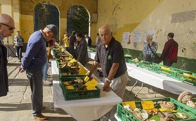 Basozaleak mostrará la riqueza cultural y culinaria de las setas en Getxo
