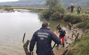 Voluntarios retiran más de 300 kilos de basura en las marismas de Urdaibai