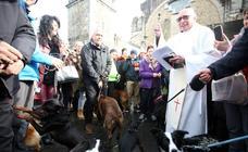 Los perros cristianos