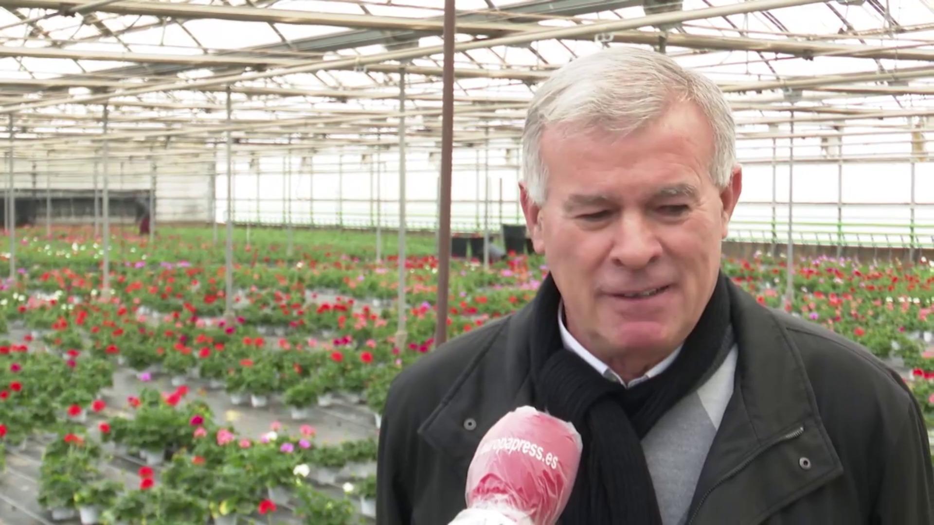 Floricultura valenciana estima pérdidas de 200 millones de euros
