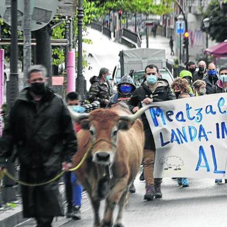 La Diputación da por extinguido los derechos históricos de pasto en La Arboleda