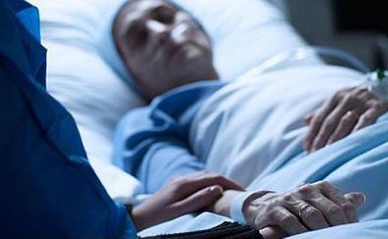 Nueva ley de eutanasia: quién podrá pedirla y cómo se solicitará | El Correo
