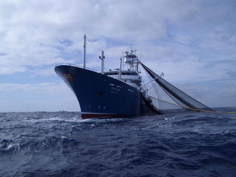 Bermeo reúne a expertos internacionales para debatir sobre su industria atunera