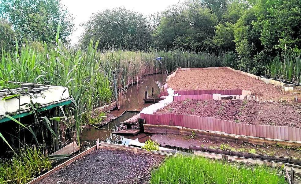 La Agencia del Agua analizará la gravedad del deterioro del humedal de Astrabudua