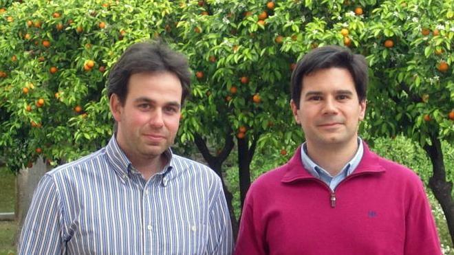 Científicos españoles desarrollan un sistema para predecir movimientos sísmicos
