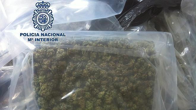 Diez detenidos y más de ochenta kilos de marihuana intervenidos en Torremolinos