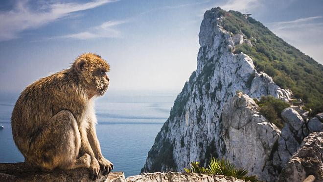 Gibraltar, la reserva 'british' de Andalucía