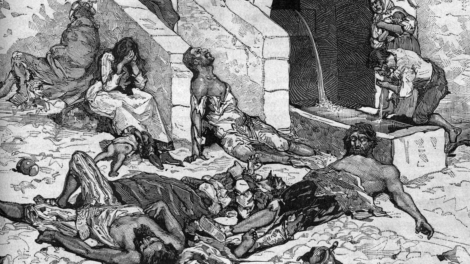 Y si las ratas no fueron las culpables de la peste negra? | El Correo