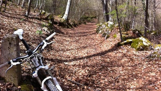 Rutas para pedalear en otoño