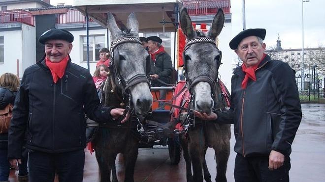 Ya son 37.000 las firmas contra el «maltrato» a las mulas que llevan a cuatro alaveses al Rocío