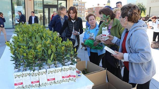 Bizkaiko Aldundiak 4.500 ereinotz landare banatuko ditu zazpi udalerritan