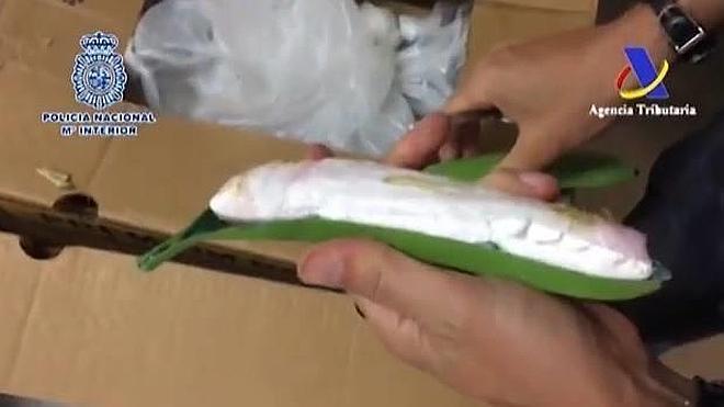 Interceptados en Algeciras 171 kilos de cocaína en plátanos de plástico