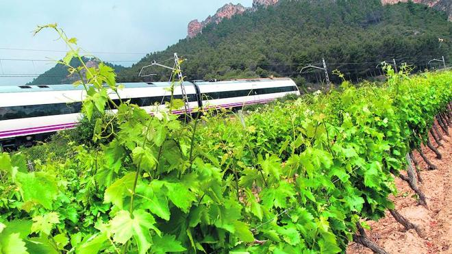 UAGR reclama de Madrid condiciones «más justas» en el reparto del viñedo