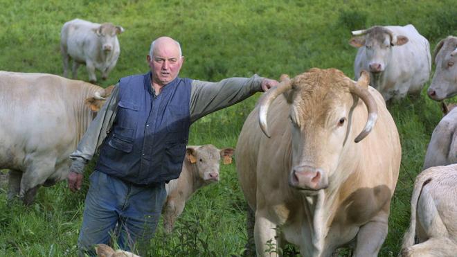 La ganadería pierde peso en los pastos de Lea Artibai